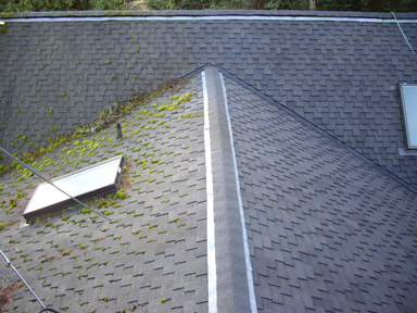 Roof cleaning and roof treatment services provider in Bainbridge, Seattle and Bellevue. We offer quality services with our clients at heart. Call us now