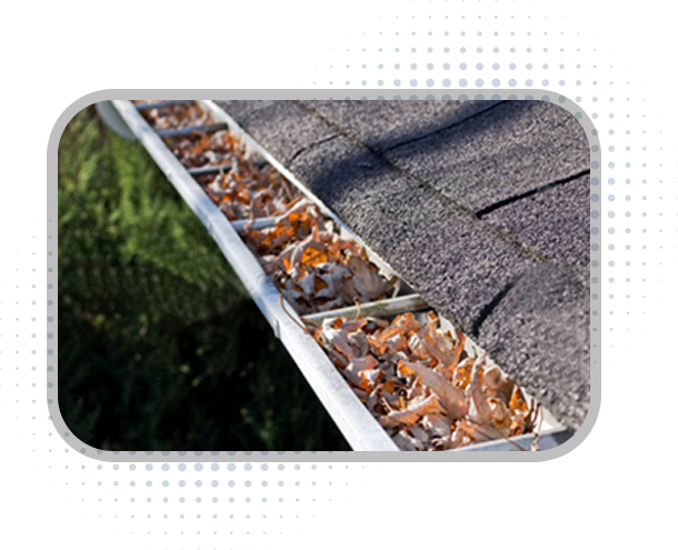 Gutter cleaning Bainbridge at it's best. We are a leading gutter cleaning and treatment company in Seattle.